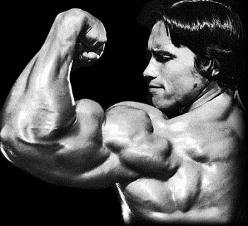Does Flexing Build Muscle And Increase Muscle Tone?