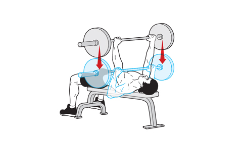 Barbell bench press form jpg