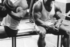 Arnold pause in between sets